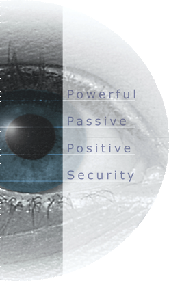 Iris recognition eye